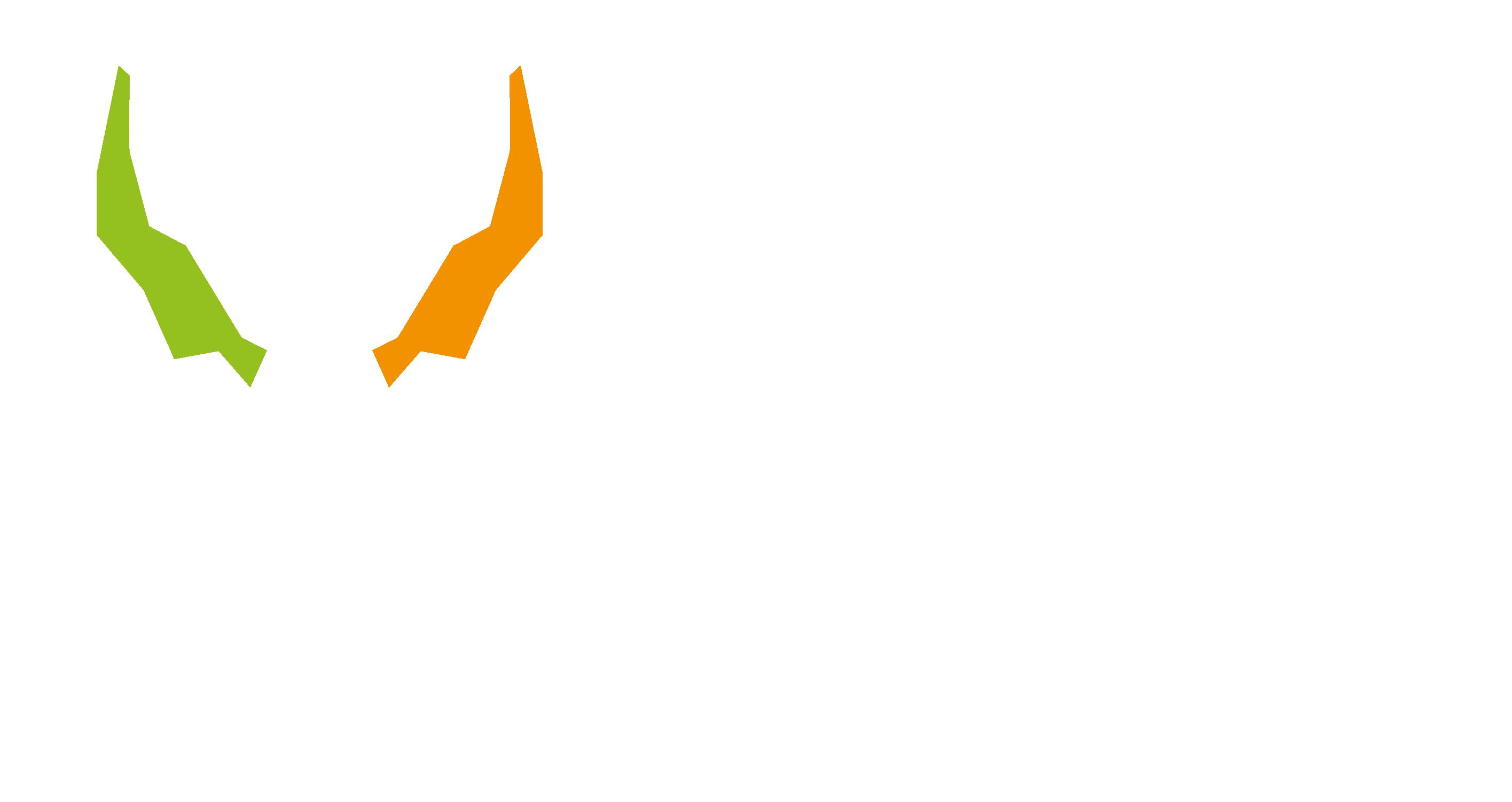 Wagenhäuser Coaching