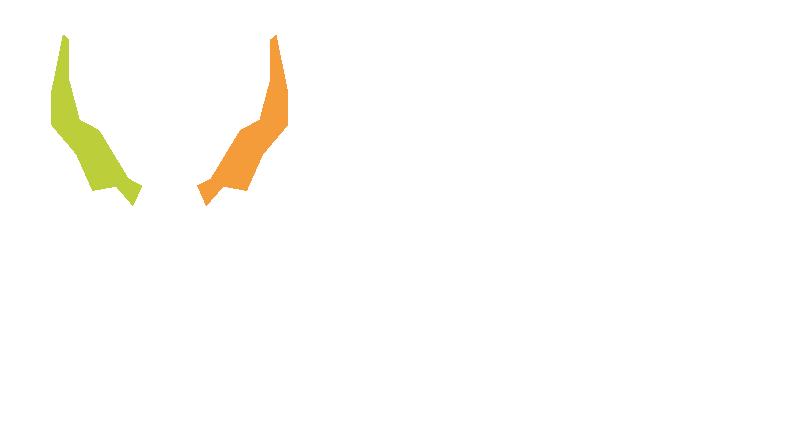 Wagenhäuser Coaching - Das Coaching mit Bock im Ruhrgebiet height=